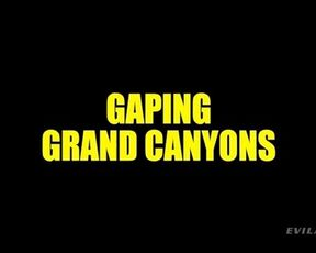 Foursome, All Sex Gaping Grand Canyons Evil Angel
